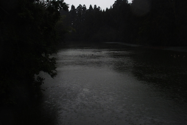 A 初撮り 16.JPG