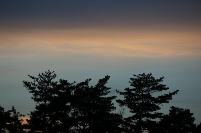 A 金谷山 04.JPG