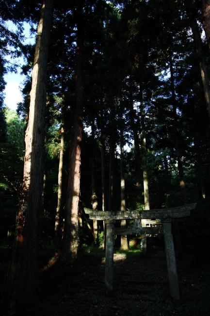 A春日山06.JPG