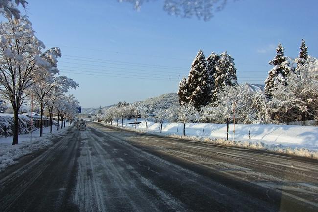 冬景33.jpg